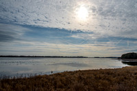 Chincoteague - December 31st, 2014